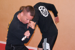 Inside Knee Strike