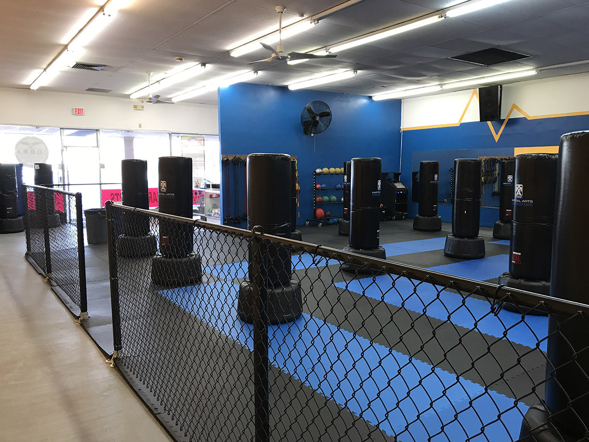 self defense classes clearwater COBRA